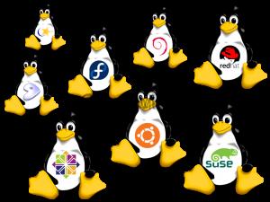 Подключение из Linux к Windows RDP