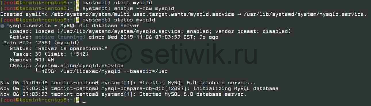 Управление сервисом MySQL в CentOS 8