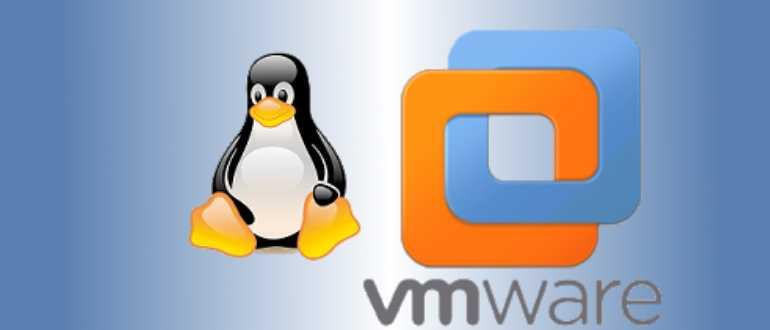 Как установить VMware Workstation 16 в Linux