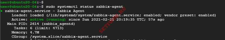Проверка состояния zabbix - agent