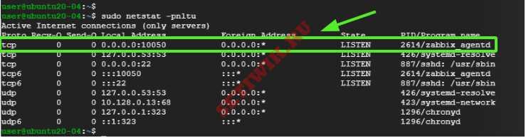 Проверка порта zabbix агента