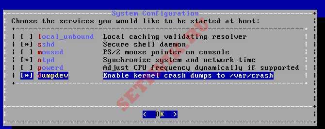 Выбор служб при запуске системы FreeBSD