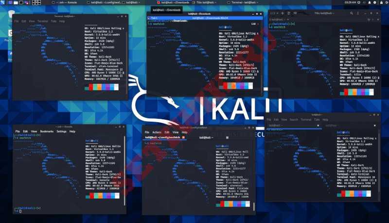 Терминалы Kali Linux