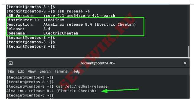 Проверка Версии AlmaLinux