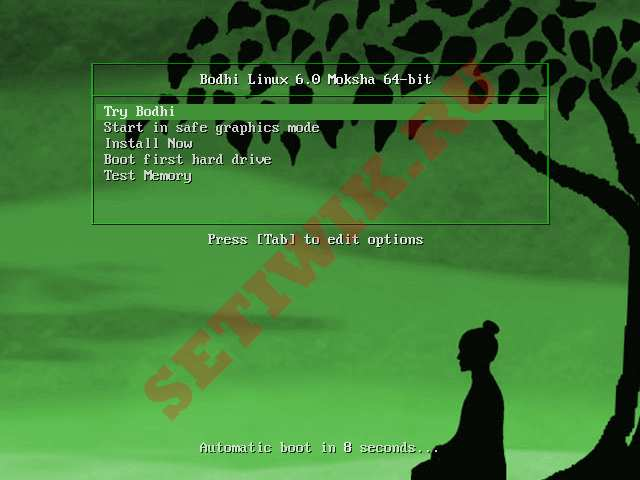 Меню загрузки Bodhi Linux