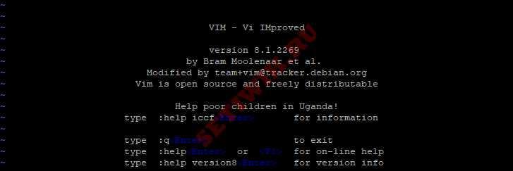 Открытие редактора Vim