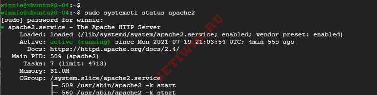Проверка состояния веб-сервера Apache