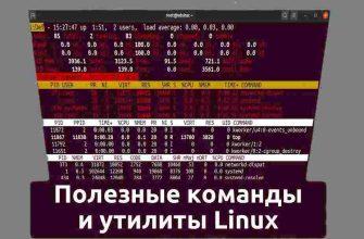 Как использовать команду WHO в Linux Все о команде WHO