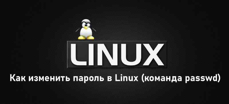Как изменить пароль в Linux (команда passwd)