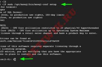 Инициализация Microsoft SQL Server в Linux