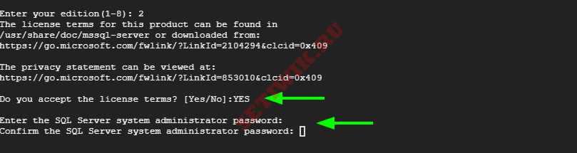 Настройка пароля администратора SQL Server