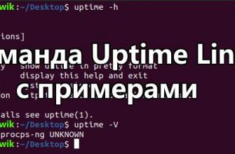 Команда Uptime Linux с примерами